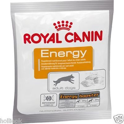 Royal Canin Energy Dog Treat Supplement For Training Active Dogs 50G