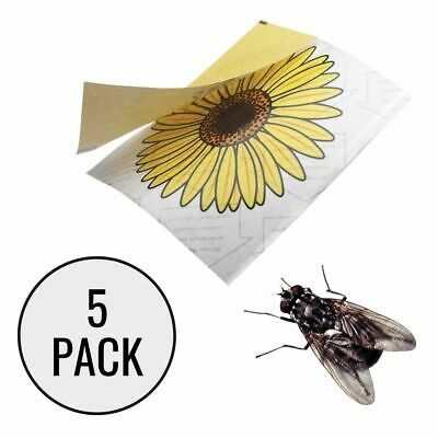 FLY STICKER WINDOW TRAP (5 x Sticky Traps) Sun Flower Attractant Flies & Insects