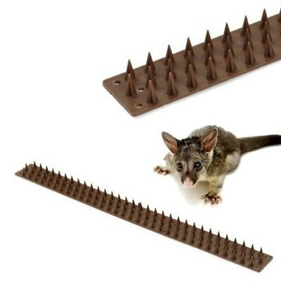 PEST DEFENCE Fence & Wall Intruder Spikes Barrier * 1 METRE * Deter Possum Cat