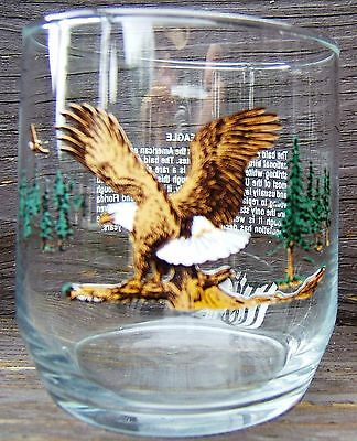 Vintage Bald Eagle Wings Spread Endangered Species Glass Tumbler 12 Ounce