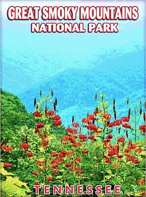Great Smoky Mountains National Park United States Travel Advertisement Poster
