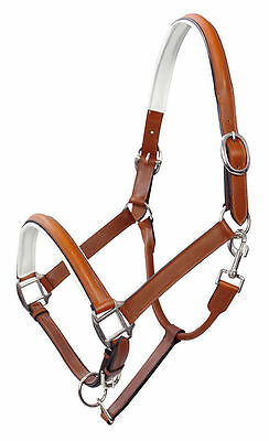 PFIFF REAL Leather White Padded Part Rolled Headcollar/Halter