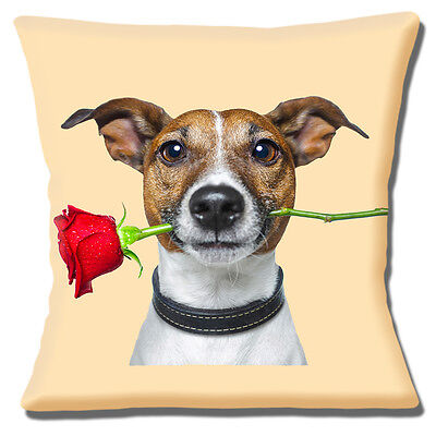 "Jack Russell Dog 16""x16"" 40cm Cushion Cover Tan White Dog Red Rose in Mouth"