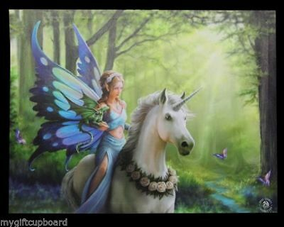 "Anne Stokes ""Realm of Enchantment"" Large 40x30cm Canvas Wall Art Plaque Fantasy"