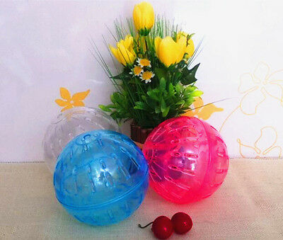 Hot Pet Mice Gerbil Hamster Jogging Playing Exercise Ball Toy Randomly Color PAT