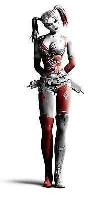 "Harley Quinn Batman Arkham City Silk Cloth Poster 47 x 24"" Decor 07"