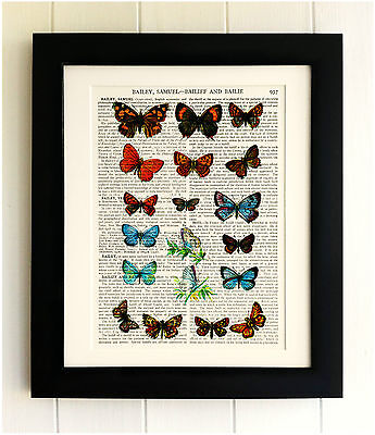 ART PRINT ON OLD ANTIQUE BOOK PAGE *FRAMED* Butterflies, Dictionary Picture Gift