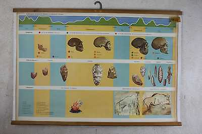 Vintage Scientific Poster German 1950 History Lehrkarte 4183 Altsteinzeit • CHF 77.97