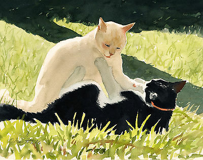 """""""afternoon Romp"""" - Black White Cat Fr. A/p Art Print By Drew Strouble Catmandrew"""