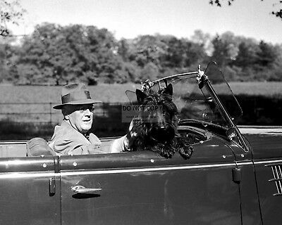 President Franklin D. Roosevelt In Convertible With Dog Fala 8X10 Photo (Zz-186)