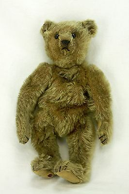 Antique Early Jointed Steiff Bear ca1908