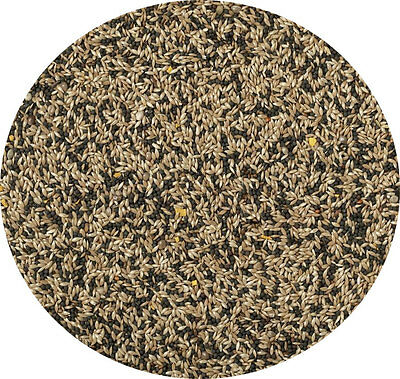 Canary Seed Mixed 500g Bow Brand Great Seed Mixed Seed Food Feed For Canaries