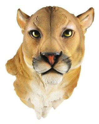 Large Mountain Lion Hanging Wall Bust Sculpture Figurine Hunter Trophy Statue