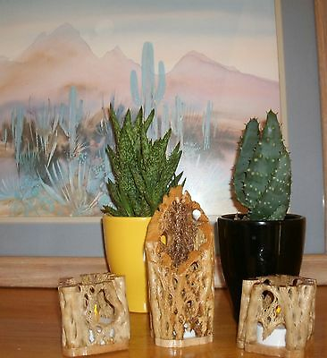 Handmade Cholla Cactus Candle Votive Holders Great Gift Idea!! Art Decor