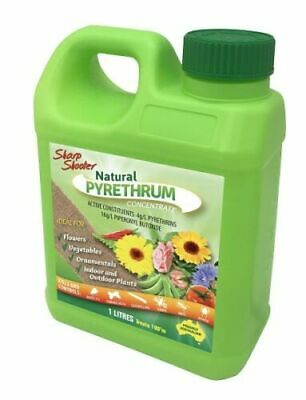 SHARP SHOOTER NATURAL PYRETHRUM INSECT SPRAY 1L Concentrate Pyrethrin Extract