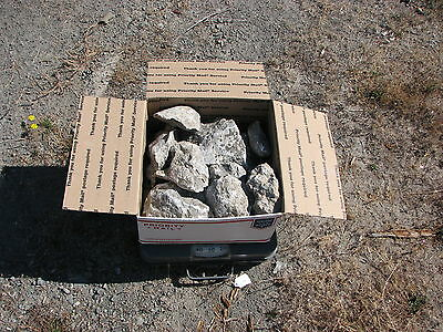 20  lbs of California Soapstone rough cut carve lapidary old stock free ship USA