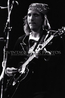 Joe Walsh, Eagles Photo 8x12 or 8x10 inch Live 1970's Concert Tour Print 17