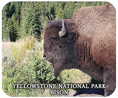Mouse Pad Custom Thick Mousepad-Yellowstone National Park Bison-Add Any Text