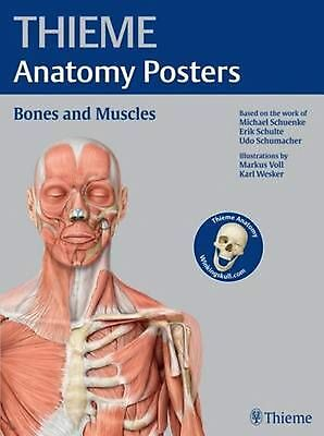 Thieme Anatomy Posters Bones and Muscles by Michael Schuenke Paperback Book (Eng