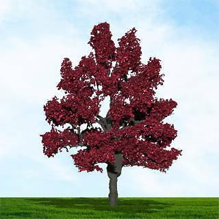 "MP Scenery - N Scale - 4 x Copper Beech Trees 1 1/2 - 2"" Tall  #70410"