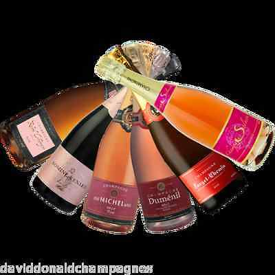 Fine French Mixed Champagne - ROSE (PINK) TASTING PACK - 6 Bottles Of The Best!