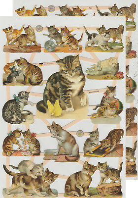 Chromo EF Découpis Chat 7407 Embossed Illustrations Cat