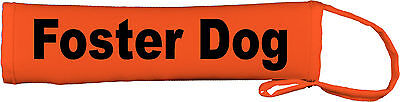 Foster Dog Lead Slip Cover Available colours Red, Blue Yellow 74