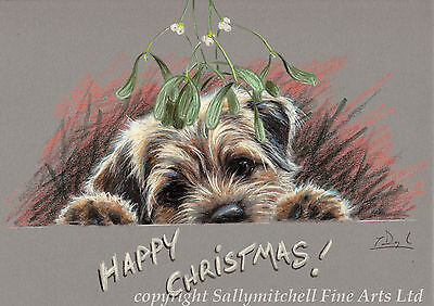 Border Terrier dog, Christmas cards pack of 10 by Paul Doyle. C443X