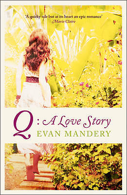 Q: A Love Story, Evan Mandery, New