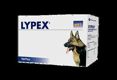 Lypex Capsules for dogs, Pack of 60, Premium service, fast dispatch