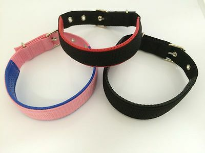 Strong Adjustable Padded Dog Puppy Pet Collar.   Extra ID Barrel Offer Also.