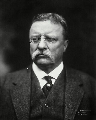 Theodore Roosevelt 26Th President Of The United States - 8X10 Photo (Bb-511)