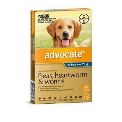 Advocate 3 Pack Extra Large Dogs over 25kg for fleas, heartworm and worms