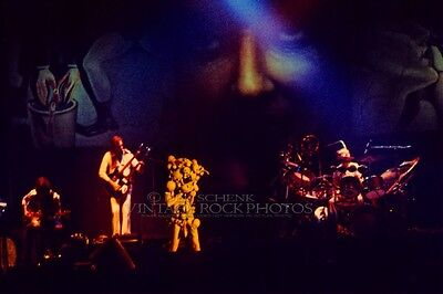 Genesis Photo Phil Collins 8x12 or 8x10 in Live 1975 Mem Hall K City Concert D2