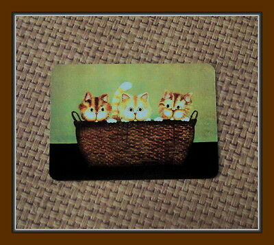 Three Wee Ginger Kittens In A Basket Refrigerator Magnet