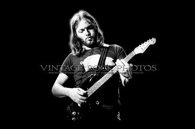 David Gilmour PINK FLOYD 20x30 inch Poster Photo Live 1977 Concert Pro Print 1