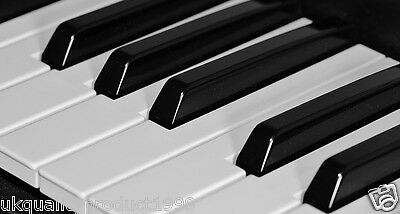 For Beginners How To Play Piano/keyboard Video Guide Tutorials Lesson Learn Dvd