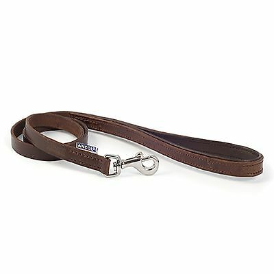 Ancol  Vintage Leather Dog Puppy Padded Lead Leash Chestnut Brown