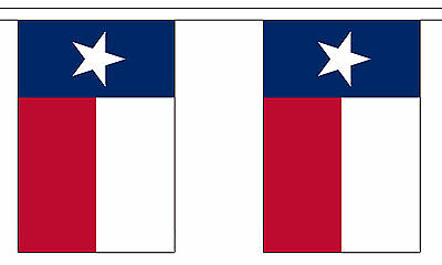 TEXAS U.S. STATE BUNTING 9 metres 30 flags Polyester flag