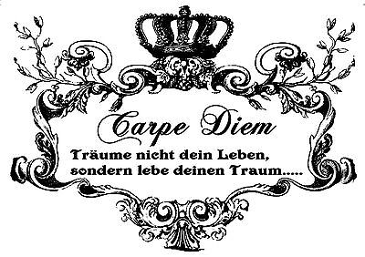 Shabby-chic**Möbeltattoo**Transparent**Nr.:1240 ****CARPE DIEM .......