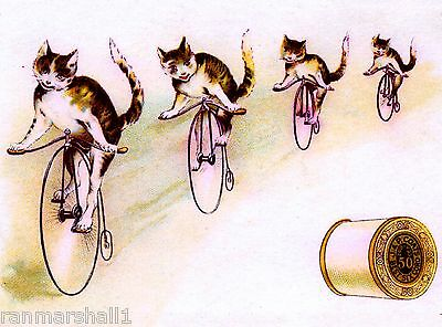 Cats on Bicycles J & P Coates Sewing Victorian Trade Cards Poster Advertisement