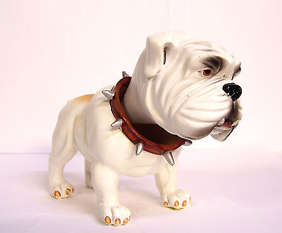 "12 pc Master Case White English Bull Dog Bobble Head Knocker Hound 6"" Resin RARE"