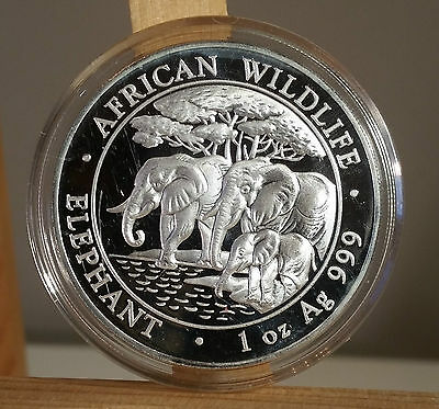 2013 Somali Republic African Wildlife Elephant 1 Oz - Airtite Capsule - Silver