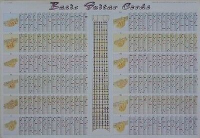 Music Learning New Colorful Paper Board Poster Guitar 180 Chords Table Ver.3