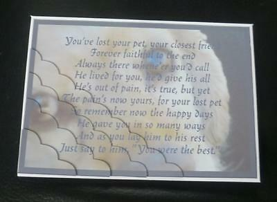 Forever Faithful Dog Pet Loss Sympathy Card - Male or Female