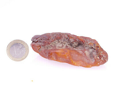Echter Roh Bernstein Rar Amber Stones 55 Gramm Natural Baltic (Private Sammlung)