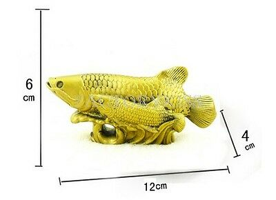 Feng shui chinese 1900 now asian cultures for Arowana tank decoration