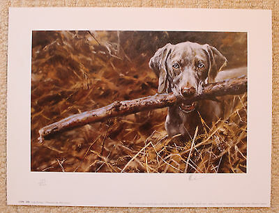 "Mick Cawston Limited Edition Signed Print  ""early Learning"""