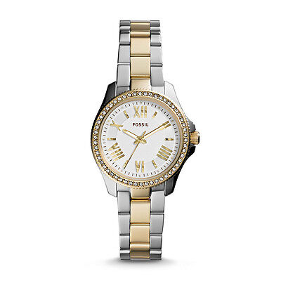 FOSSIL  CECILE  MULTIFUNCTION Gold-Tone Watch  AM4579 Stainless Steel Stripe