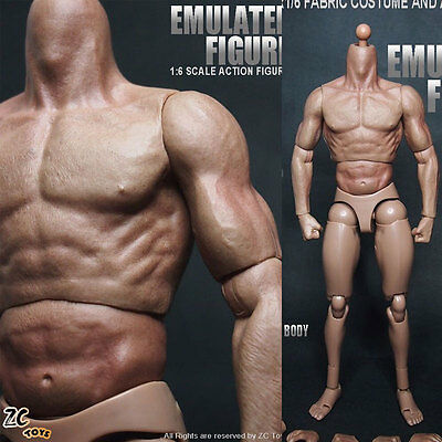 """ZC Toys 12"""" Muscular Figure Body fit  For 1/6 Scale Hot Toys Head SCULPT"""